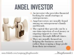 angel investor-meghna